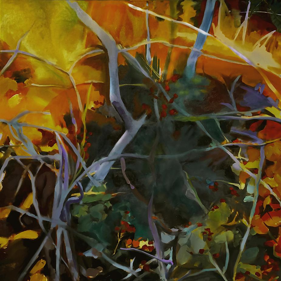 Autumn Brambles