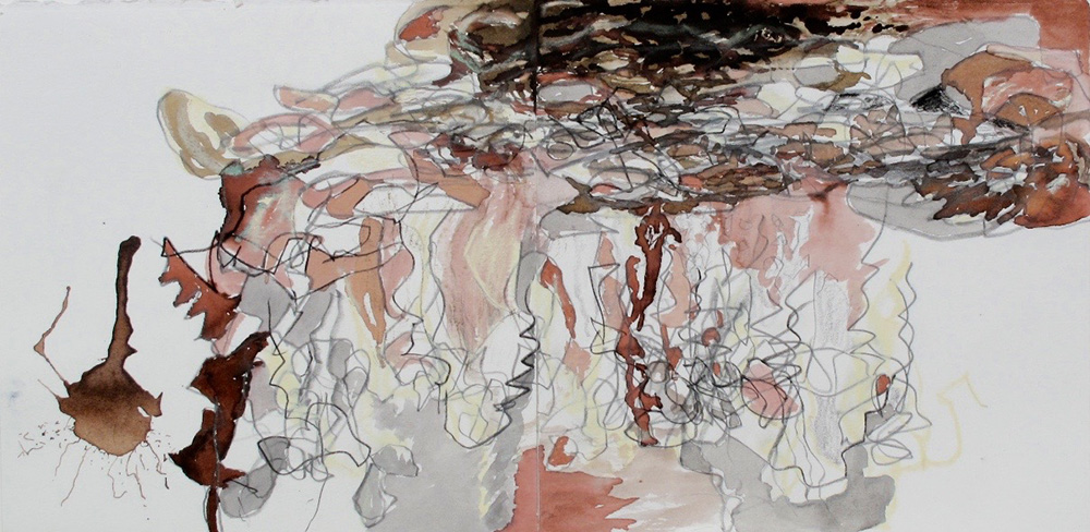 DebtCeiling.GraphiteAndInkOnPaper.10x20inches.2011