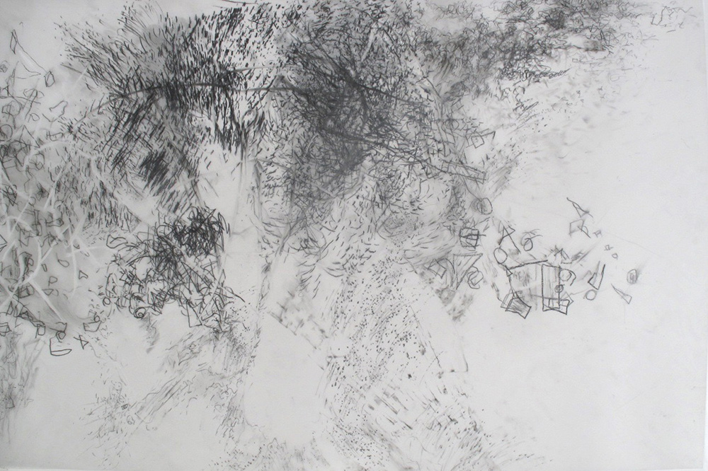 Updraft.GraphiteOnMylar.20x30inches.2013