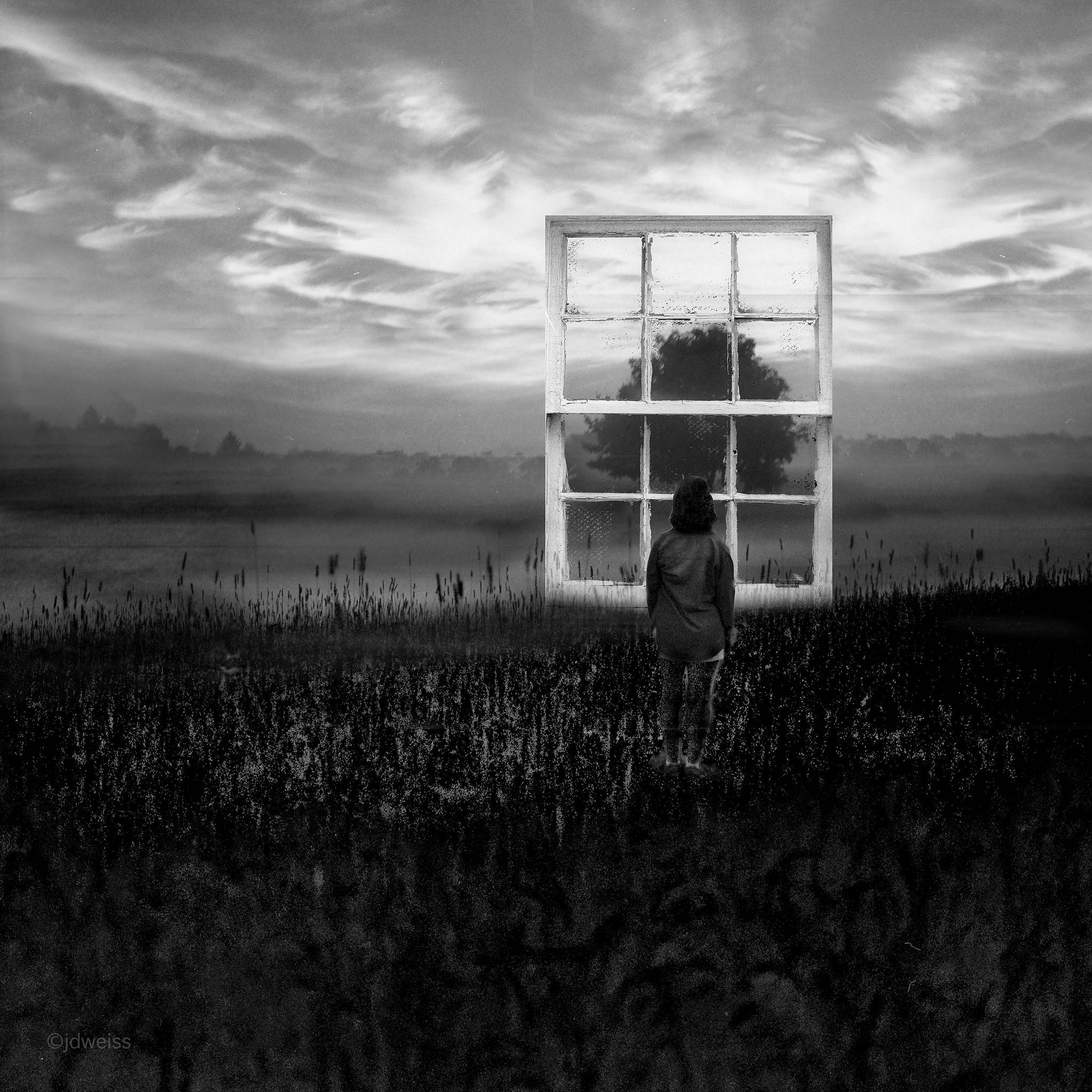 window to the field