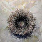 bridal_nest