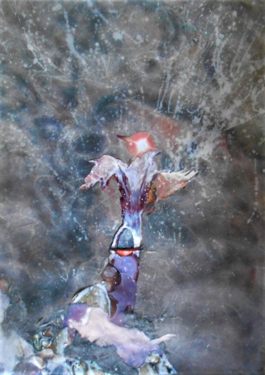 abramson, gertrude, flying creatures, mixed media, 19x25inches (2)