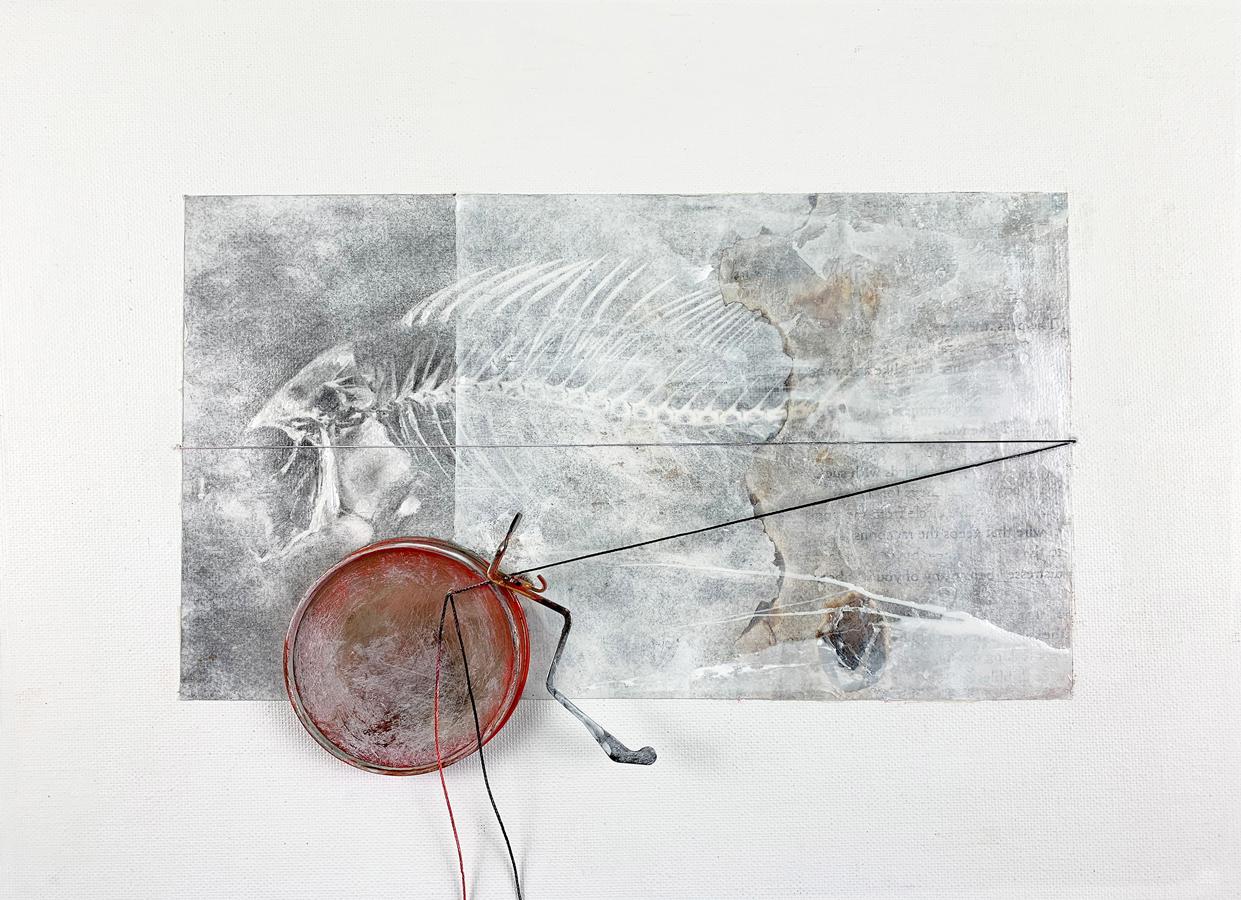 Carmen-Li-Binding Fragments I