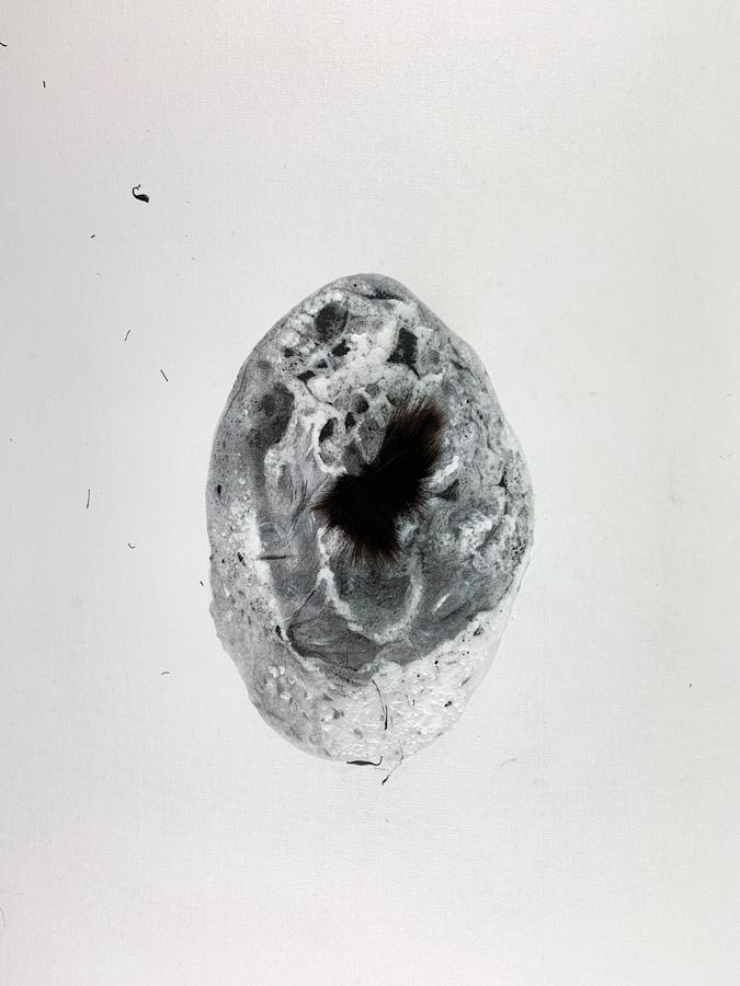 Carmen Li-Female-Body-Study-4
