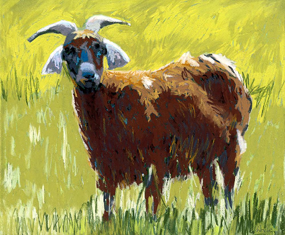 Jenny's Brown Goat WAAM-b1873336