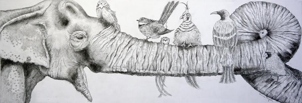 Birds on a Trunk-adc28b3b