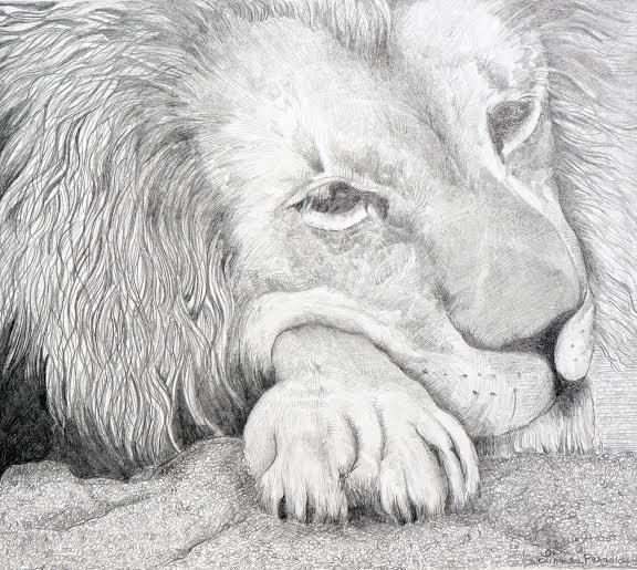 Resting Lion-516f91cc