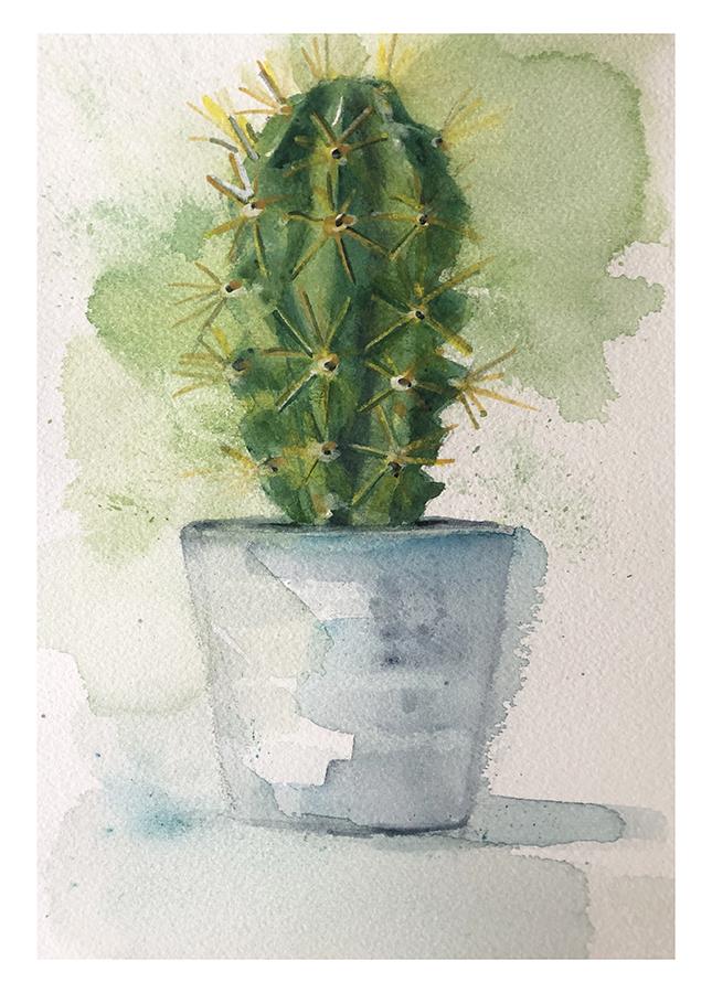 Cactus-3ca1f09b